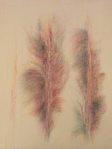 [Federn], Farbstift auf Büttenapier, 40*30 cm, 2001