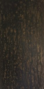 #148  [Umbra Grau Gold] Pigmente (Umbra natur, Mangangrau), Colibri Gold, Gummi arabicum auf Lw., 100*50 cm, 2019
