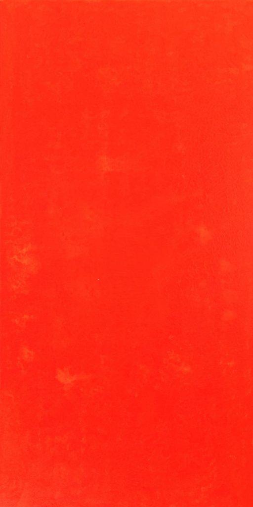 13_Orange_I_Vertikal