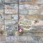 Rosa Kinderhandschuh an der Mauer zum Hof, 17.12.2020, Düsseldorfer Str. 47, Köln-Mülheim